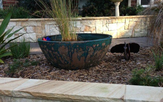 landscape services - garden landscaping